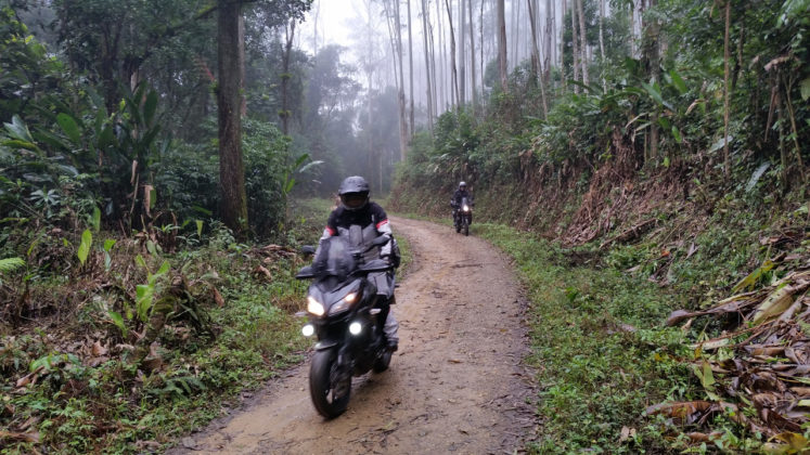 Estrada do Rio Claro